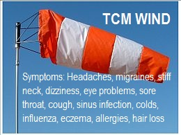 TCM-Wind-–-Wind-in-Chinese-Medicine