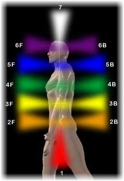location-of-the-chakras